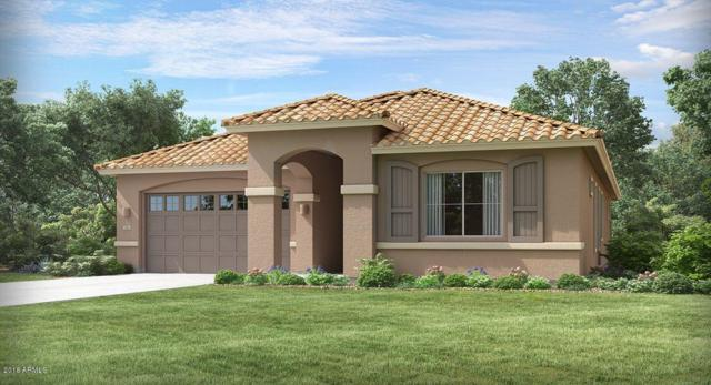 21505 E Pecan Court, Queen Creek, AZ 85142 (MLS #5835772) :: CANAM Realty Group
