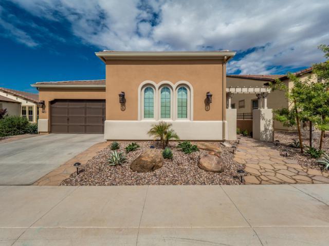 384 E Vesper Trail, San Tan Valley, AZ 85140 (MLS #5835821) :: Yost Realty Group at RE/MAX Casa Grande