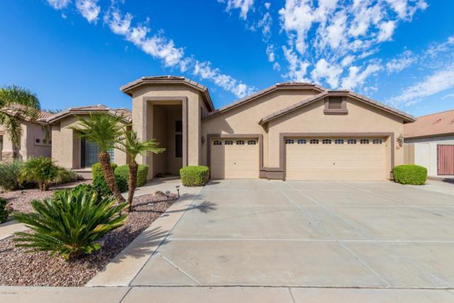 972 E Beechnut Drive, Chandler, AZ 85249 (MLS #5835823) :: Kelly Cook Real Estate Group
