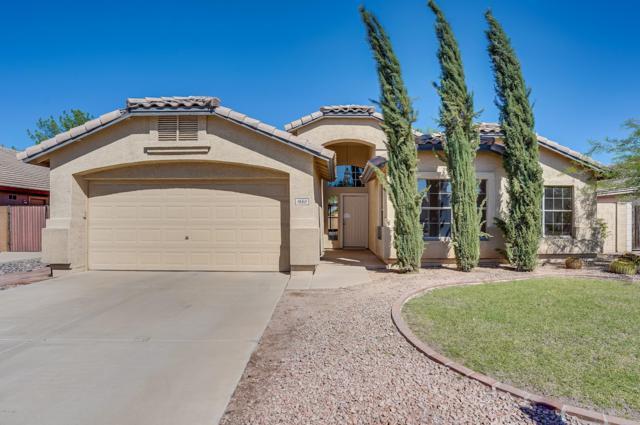 1660 E Tulsa Street, Gilbert, AZ 85295 (MLS #5835844) :: CANAM Realty Group
