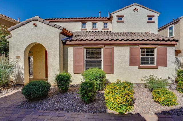 2859 E Bart Street, Gilbert, AZ 85295 (MLS #5835860) :: CANAM Realty Group