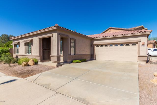 2642 E Bellerive Drive, Chandler, AZ 85249 (MLS #5835880) :: Kelly Cook Real Estate Group