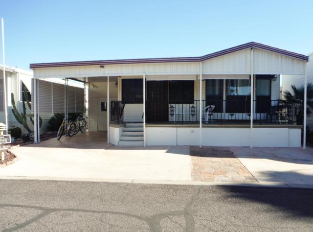 17200 W Bell Road #569, Surprise, AZ 85374 (MLS #5835891) :: The Sweet Group