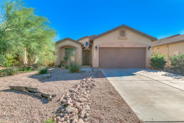 45071 W Windrose Drive, Maricopa, AZ 85139 (MLS #5835926) :: Yost Realty Group at RE/MAX Casa Grande