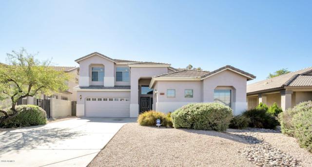 11209 W Locust Lane, Avondale, AZ 85323 (MLS #5835947) :: The Luna Team