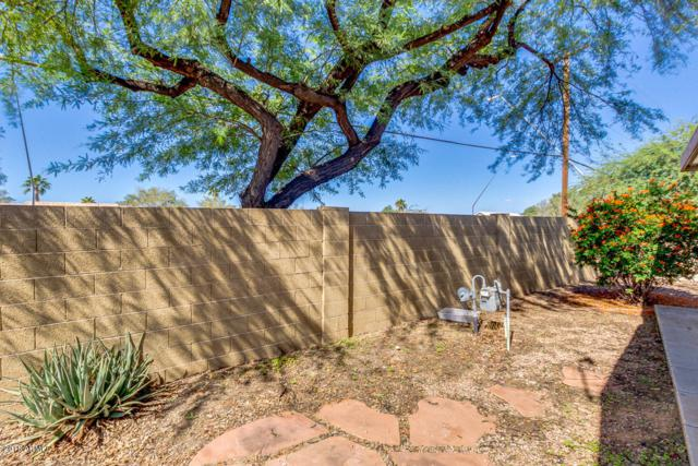 201 S Greenfield Road #15, Mesa, AZ 85206 (MLS #5835952) :: Kortright Group - West USA Realty