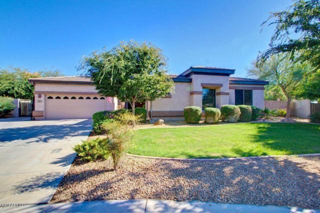 391 E Frances Lane, Gilbert, AZ 85295 (MLS #5835993) :: CANAM Realty Group