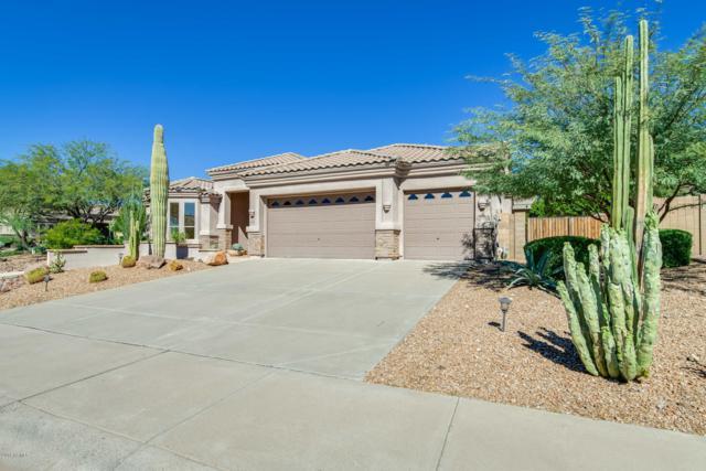 12540 E Mercer Lane, Scottsdale, AZ 85259 (MLS #5836005) :: CANAM Realty Group