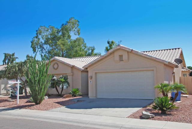 11 W Behrend Drive, Phoenix, AZ 85027 (MLS #5836009) :: Kelly Cook Real Estate Group