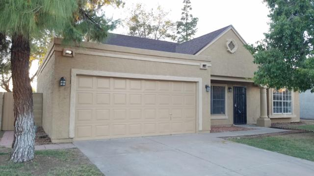 18826 N 46TH Drive, Glendale, AZ 85308 (MLS #5836035) :: The Luna Team