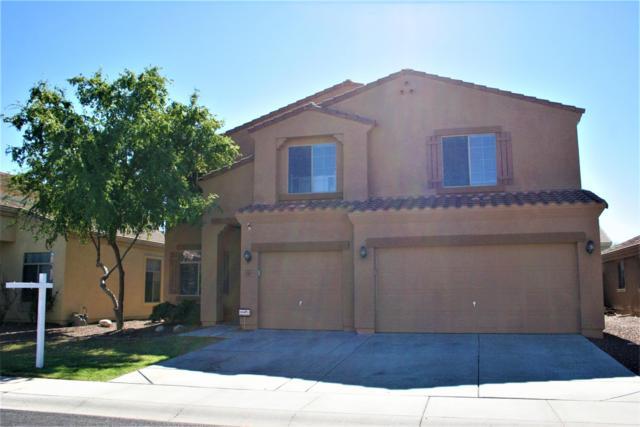 11817 W Montana De Oro Drive, Sun City, AZ 85373 (MLS #5836041) :: The Rubio Team