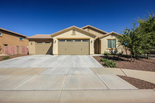 15978 W Jenan Drive, Surprise, AZ 85379 (MLS #5836043) :: RE/MAX Excalibur