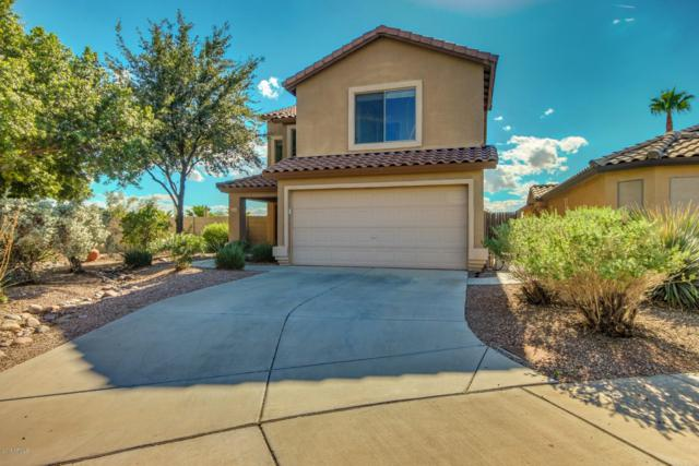 10955 W Sheridan Street, Avondale, AZ 85392 (MLS #5836044) :: The Luna Team