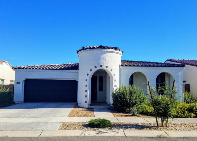 22652 E Desert Spoon Drive, Queen Creek, AZ 85142 (MLS #5836052) :: Kepple Real Estate Group