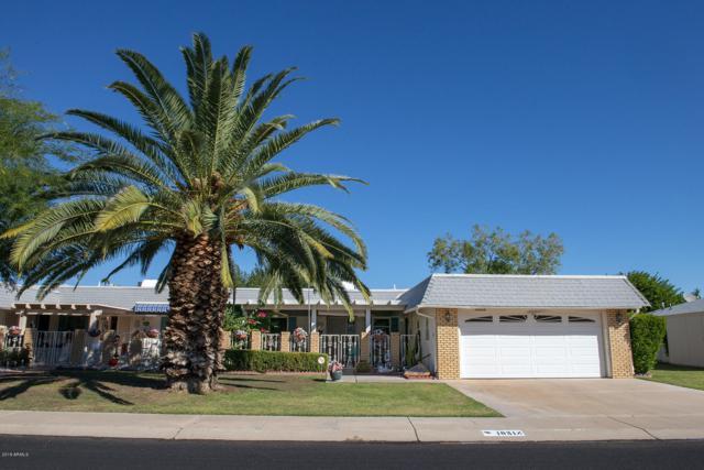 10318 W Bright Angel Circle, Sun City, AZ 85351 (MLS #5836059) :: The Rubio Team