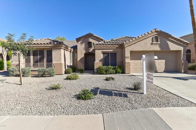 700 W Oriole Way, Chandler, AZ 85286 (MLS #5836085) :: Kelly Cook Real Estate Group