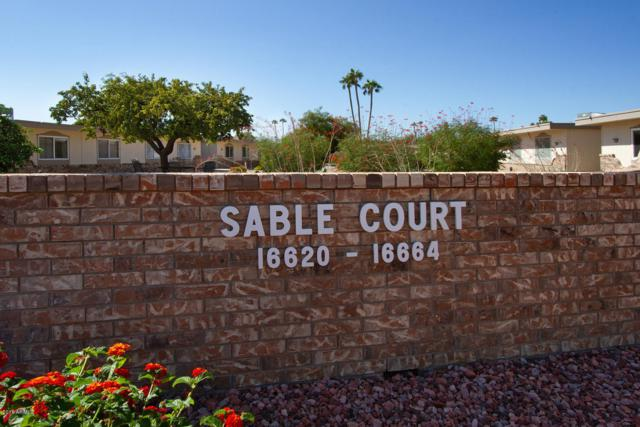 16664 N Boswell Boulevard, Sun City, AZ 85351 (MLS #5836095) :: The Rubio Team