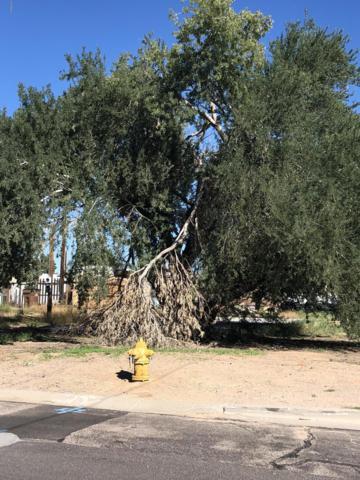 549 S 99TH Street, Mesa, AZ 85208 (MLS #5836097) :: Brett Tanner Home Selling Team