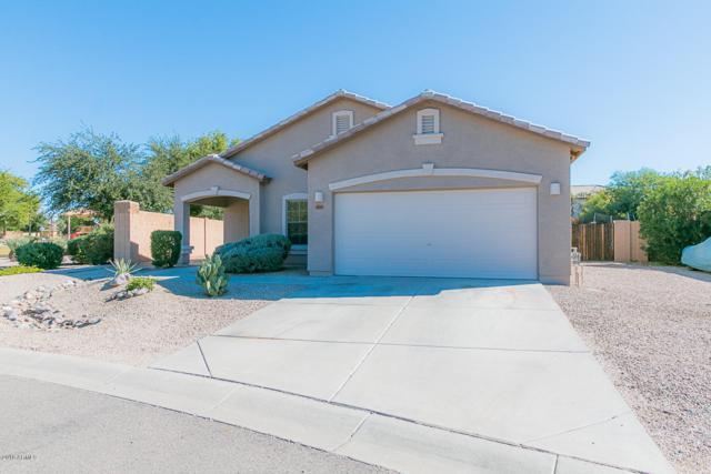 40249 N Fjord Street, San Tan Valley, AZ 85140 (MLS #5836104) :: Kepple Real Estate Group