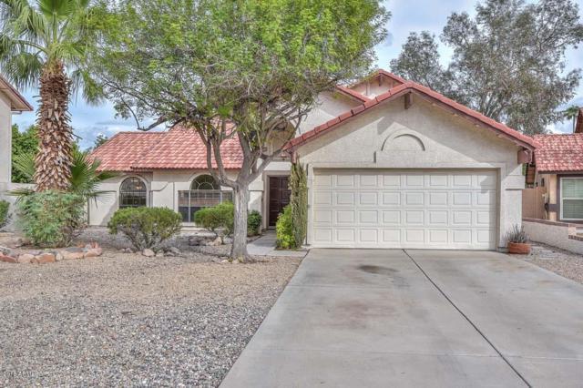18653 N 71ST Drive, Glendale, AZ 85308 (MLS #5836109) :: Kortright Group - West USA Realty