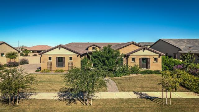 17732 E Bronco Court, Queen Creek, AZ 85142 (MLS #5836110) :: Kepple Real Estate Group