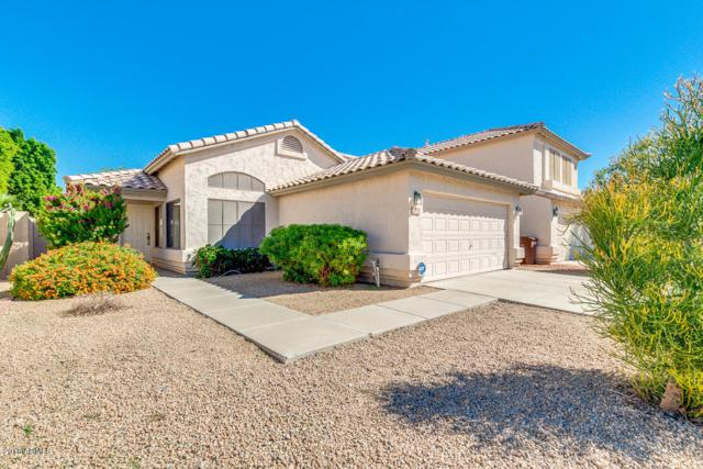 13611 N 82 Avenue, Peoria, AZ 85381 (MLS #5836189) :: Kepple Real Estate Group