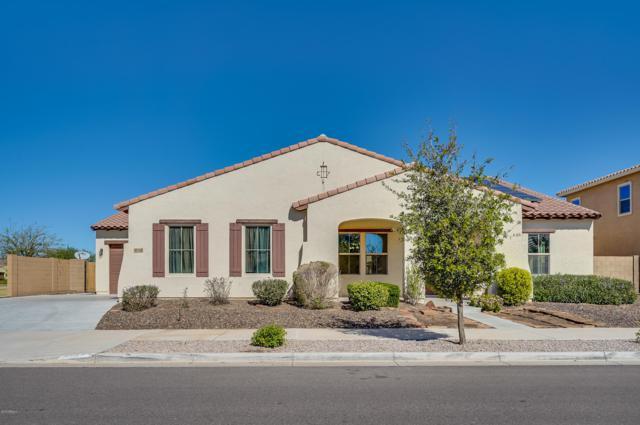 21324 E Via De Arboles, Queen Creek, AZ 85142 (MLS #5836204) :: Gilbert Arizona Realty