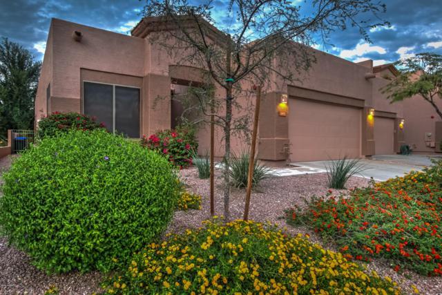1472 W Marlin Drive, Chandler, AZ 85286 (MLS #5836216) :: The Bill and Cindy Flowers Team