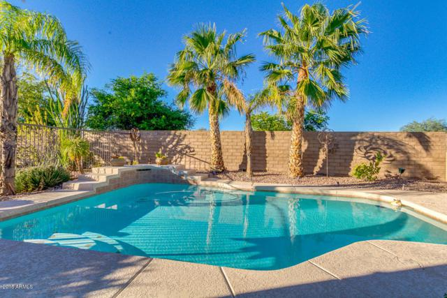 12458 W Oberlin Way, Peoria, AZ 85383 (MLS #5836225) :: Lifestyle Partners Team