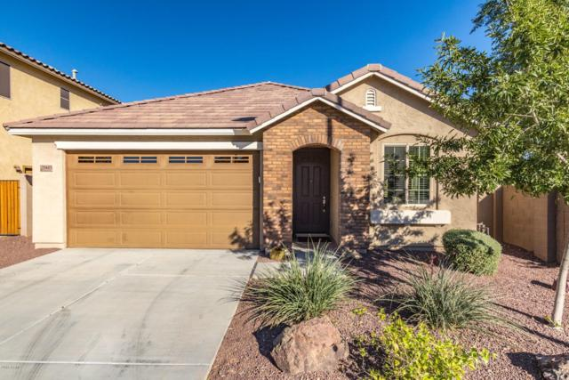 21613 N 119th Drive, Sun City, AZ 85373 (MLS #5836310) :: The Rubio Team