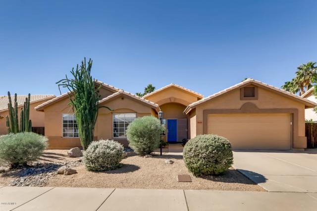 11788 N 111TH Place, Scottsdale, AZ 85259 (MLS #5836324) :: Lifestyle Partners Team