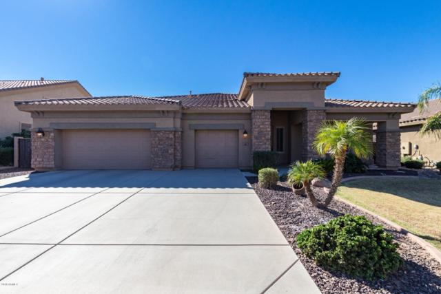11447 E Spaulding Avenue, Mesa, AZ 85212 (MLS #5836329) :: RE/MAX Excalibur