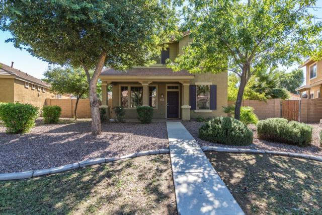 3759 E Larson Lane, Gilbert, AZ 85295 (MLS #5836345) :: Kepple Real Estate Group