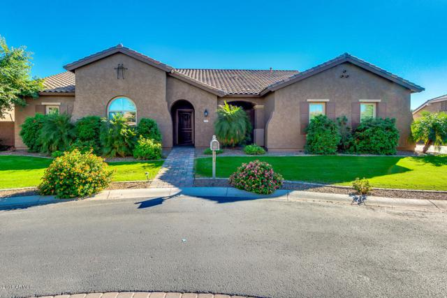 21965 E Pickett Court, Queen Creek, AZ 85142 (MLS #5836356) :: The Pete Dijkstra Team