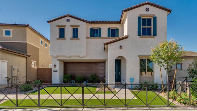 692 N Blackbird Drive, Gilbert, AZ 85234 (MLS #5836362) :: Kepple Real Estate Group
