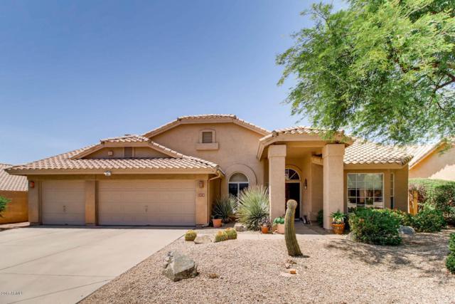 18778 N 93rd Street, Scottsdale, AZ 85255 (MLS #5836397) :: Desert Home Premier