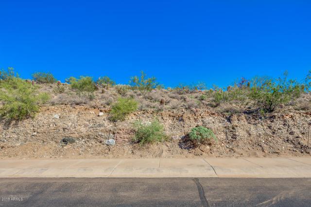 13053 N 17TH Place, Phoenix, AZ 85022 (MLS #5836404) :: Yost Realty Group at RE/MAX Casa Grande