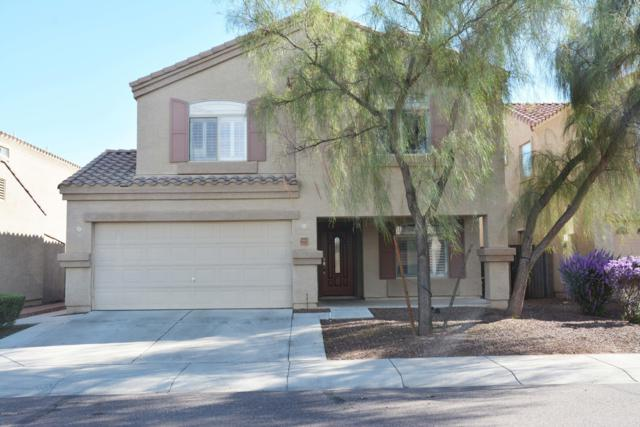 11137 W Elm Street, Phoenix, AZ 85037 (MLS #5836413) :: The Rubio Team