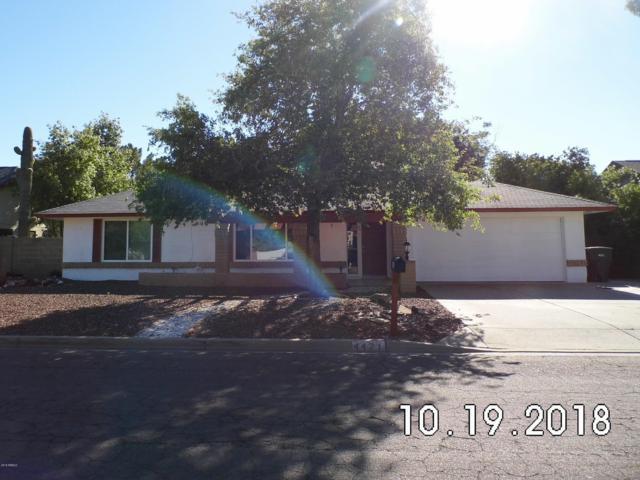 4421 W Bluefield Avenue, Glendale, AZ 85308 (MLS #5836433) :: The Rubio Team
