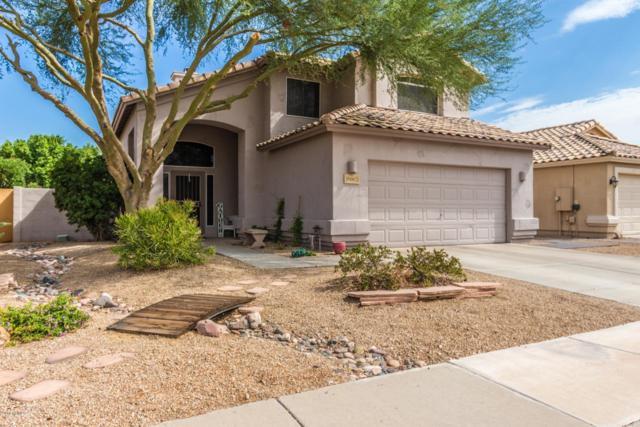 7442 W Via Del Sol Drive, Glendale, AZ 85310 (MLS #5836435) :: The Rubio Team