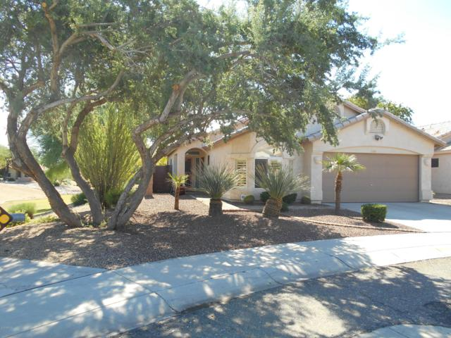935 E Montoya Lane, Phoenix, AZ 85024 (MLS #5836437) :: Kepple Real Estate Group