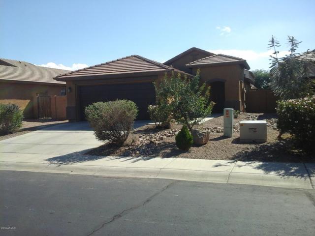 46157 W Long Way, Maricopa, AZ 85139 (MLS #5836444) :: The Rubio Team