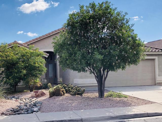 1057 E Sheffield Avenue, Gilbert, AZ 85296 (MLS #5836481) :: The Bill and Cindy Flowers Team