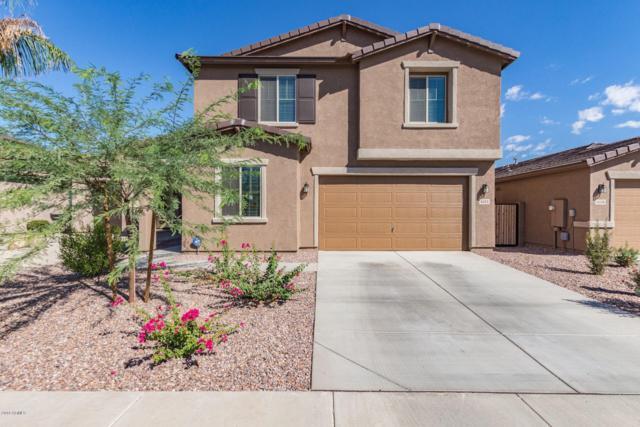 4432 W Federal Way, Queen Creek, AZ 85142 (MLS #5836484) :: Kepple Real Estate Group