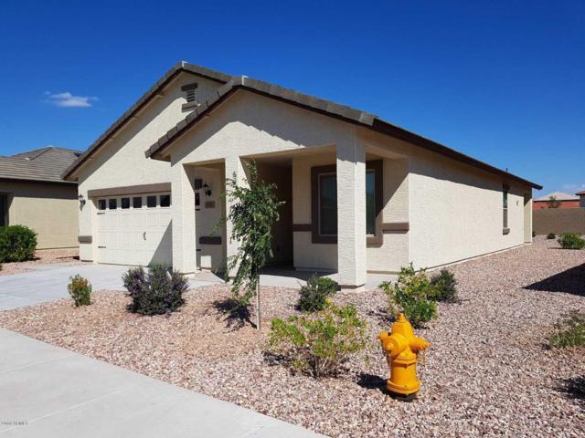 157 S 224TH Avenue, Buckeye, AZ 85326 (MLS #5836486) :: The Garcia Group