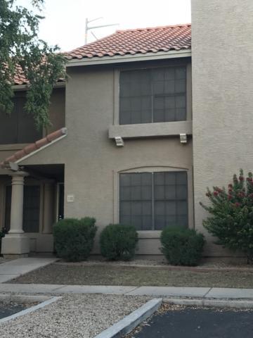 3491 N Arizona Avenue #138, Chandler, AZ 85225 (MLS #5836542) :: The Bill and Cindy Flowers Team
