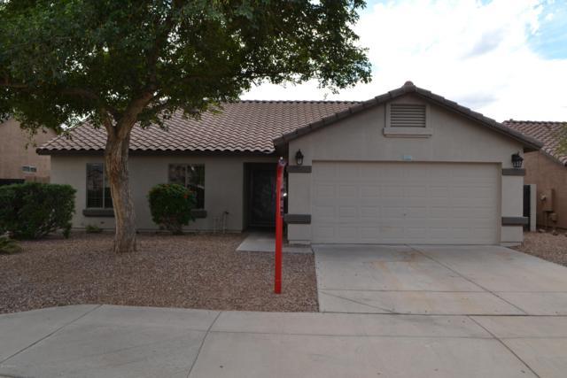 11245 E Edgewood Avenue, Mesa, AZ 85208 (MLS #5836562) :: The Kenny Klaus Team