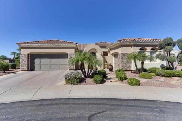 12838 W Rincon Court, Sun City West, AZ 85375 (MLS #5836570) :: Kepple Real Estate Group