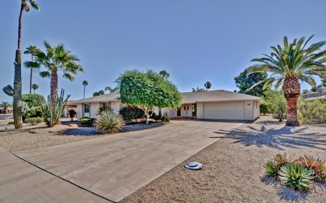 9729 W Pinecrest Drive, Sun City, AZ 85351 (MLS #5836578) :: Devor Real Estate Associates