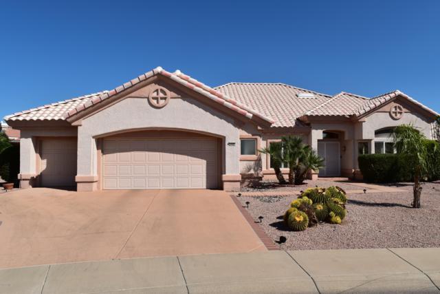 14322 W Colt Lane, Sun City West, AZ 85375 (MLS #5836581) :: The Garcia Group